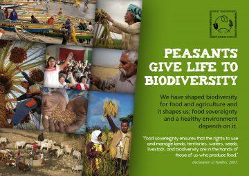 biodiversity-brochure-cover