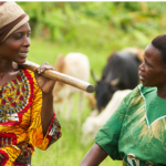 Call for articles: Measuring the impact of agroecology