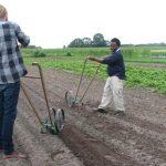 Farm Experience Internship 2016