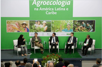 The regional meeting on agroecology for Latin America and the Caribbean. Photo: FAO