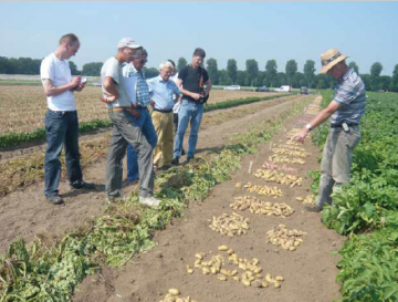 Jan van Loon, an experienced breeder and co-author of this article, explains in the Bioimpuls farmer breeding course how his field selection is organised. Photo: Louis Bolk Instituut