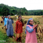 Four rural women leaders: The land is our life