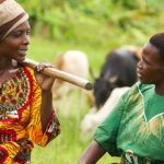 Call for articles: Co-creating knowledge in agroecology
