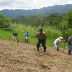 Peasant to peasant: The social movement form of agroecology