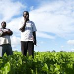 Agroecology contributes to the Sustainable Development Goals