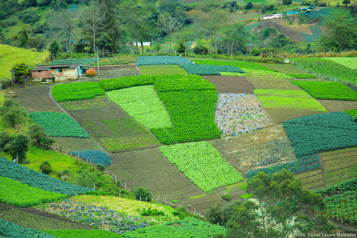 Editorial farming communities in living landscapes ileia How to landscape