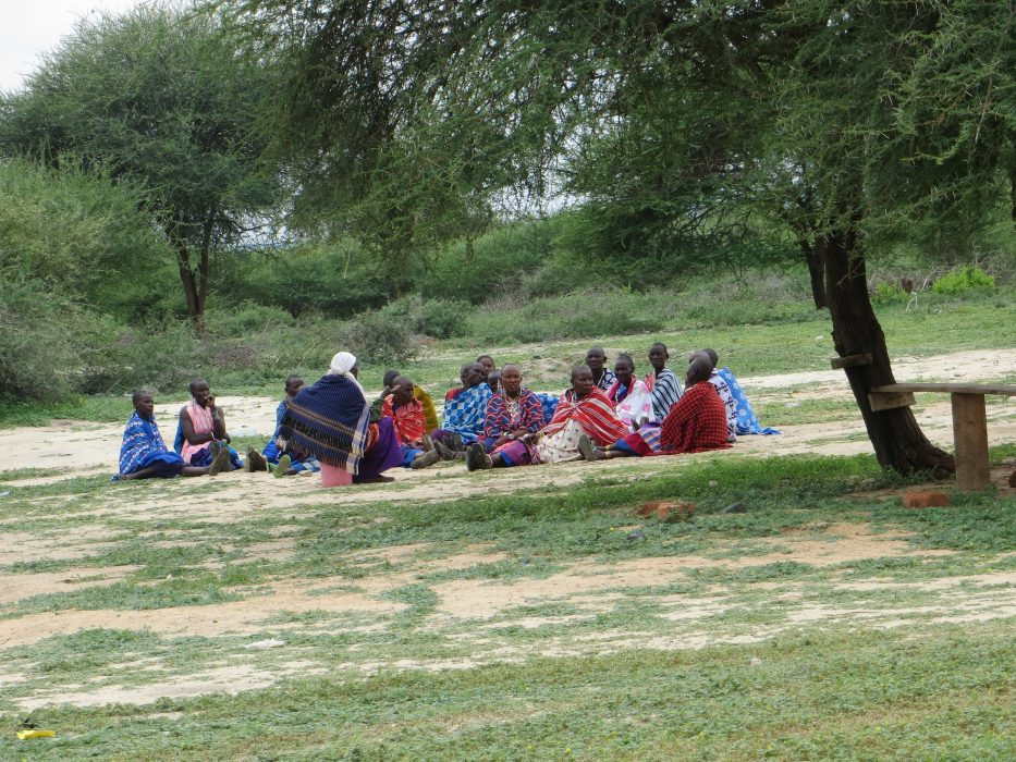 Who calls the shots? Adapting traditional land governance in Somalia