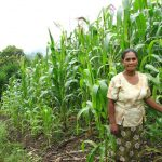 Perspectives: Agroecological approaches to enhance resilience among small farmers