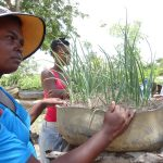 Movement building at the heart of Haitian peasants' response to climate change