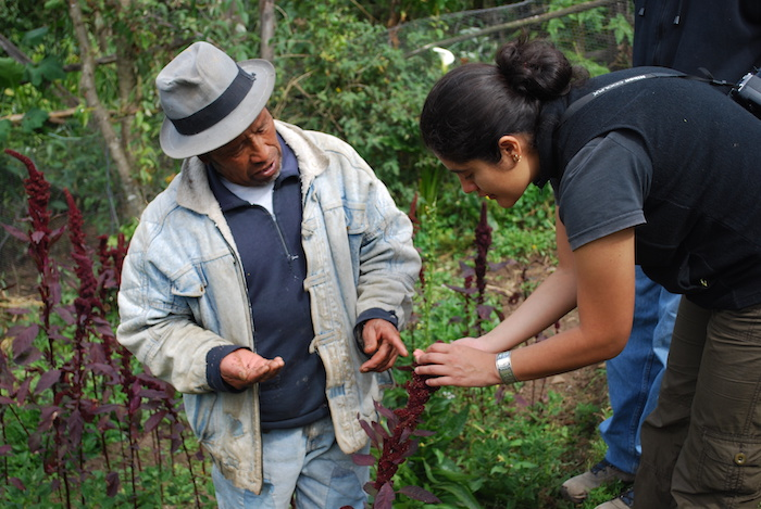 Advancing on-farm  climate resilience  with citizen science