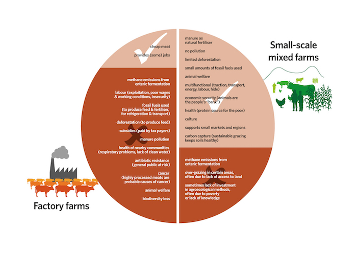 The hoofprint of factory farms versus agroecological production. Source: GRAIN and IATP